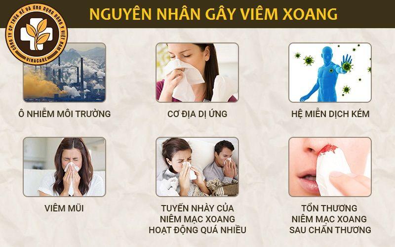 Những nguyên nhân gây viêm xoang thường gặp nhất