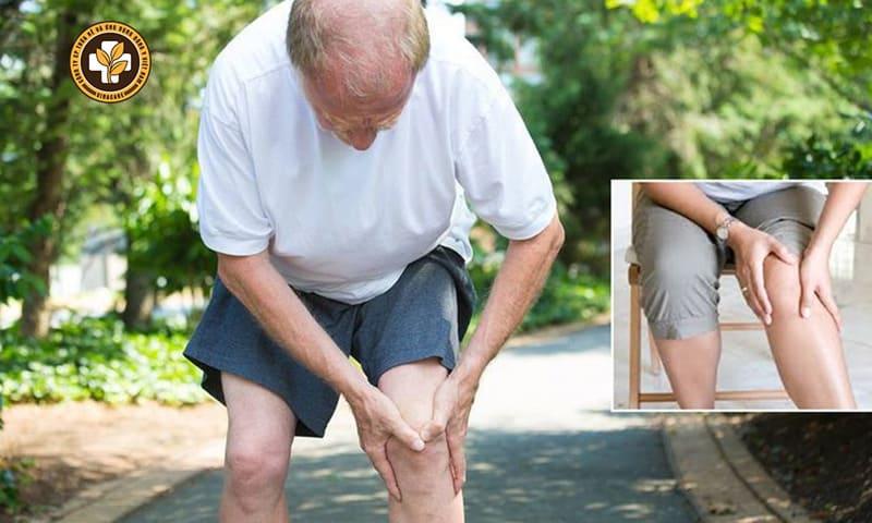 Thoái hóa khớp gây đau nhức các khớp