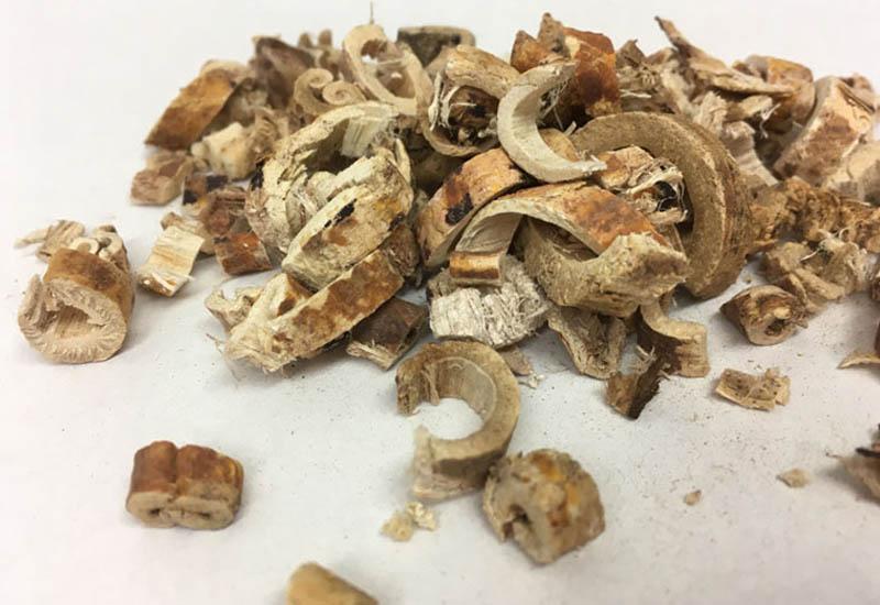 Tang bạch bì được ứng dung trong nhiều bài thuốc chữa viêm xoang mũi