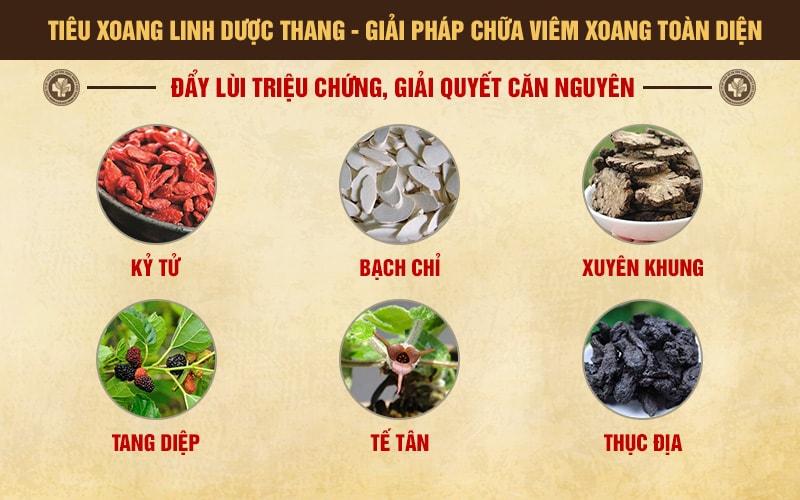 Tang diệp, tang bạch bì là những thành phần chính trong bài thuốc Tiêu xoang linh dược thang