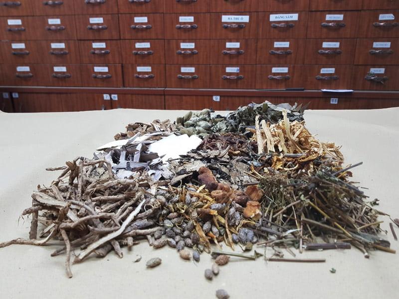 Trung tâm Thừa kế và ứng dụng đông y việt nam phát triển thảo dược sạch
