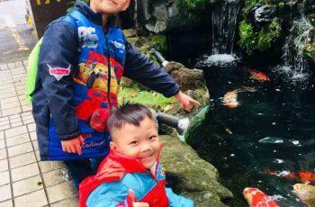 Bé Trần Văn Hưng (trái) và bé Trần Nhật Minh (phải) đều bị viêm amidan từ rất bé