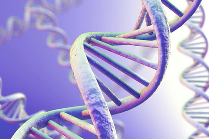 Di truyền là nguyên nhân thường gặp gây á sừng da đầu