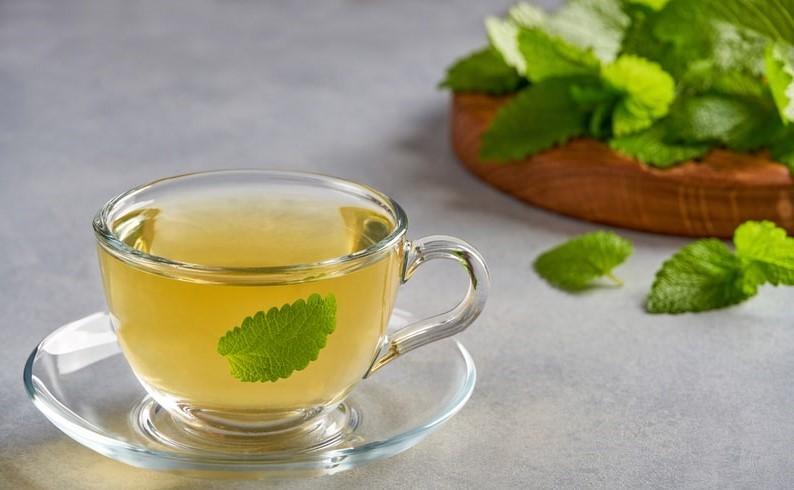 Dùng trà bạc hà