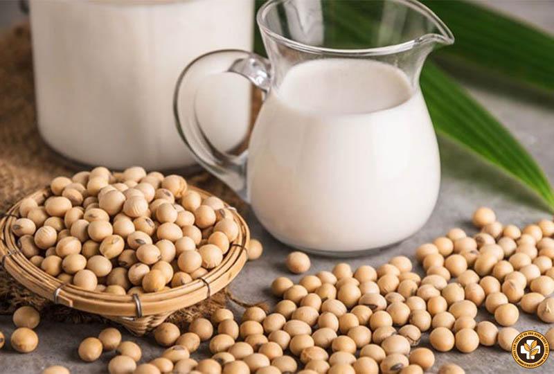 Đậu nành có hàm lượng protein cao, có thể gây ra các phản ứng dị ứng