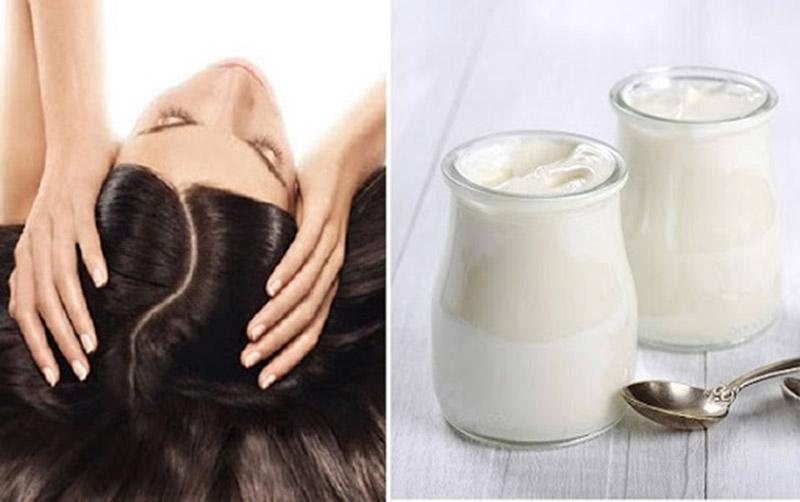 Sữa chua không chỉ cải thiện triệu chứng vảy nến mà còn nuôi dưỡng và chăm sóc tóc mềm mượt