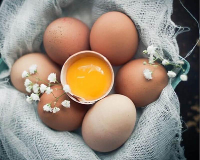 Lòng đỏ trứng gà giúp thúc đẩy quá trình phục hồi các tổn thương trên da đầu