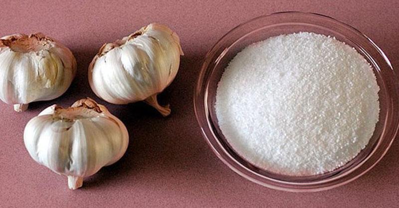Muối kết hợp tỏi làm tăng công dụng sát trùng, tiêu viêm