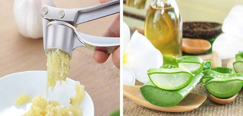 Kết hợp tỏi và nha đam làm tăng công dụng dưỡng và phục hồi da