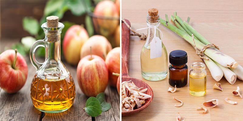 Két hợp tinh dầu sả và giấm táo để tạo thành 1 loại dầu gội trị vảy nến hiệu quả