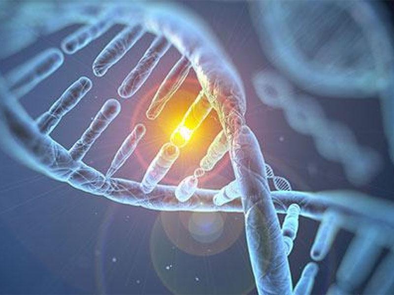 Viêm amidan có lây không? Viêm amidan có yếu tố di truyền