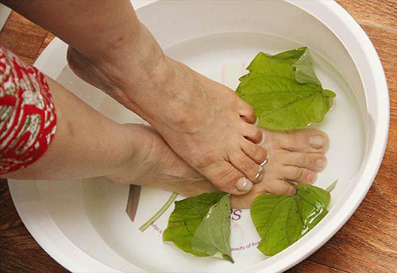Ngâm rửa bằng nước lá trầu không để cải thiện triệu chứng ngoài da