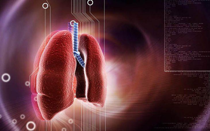 Viêm phế quản cấp là bệnh lý hô hấp phổ biến