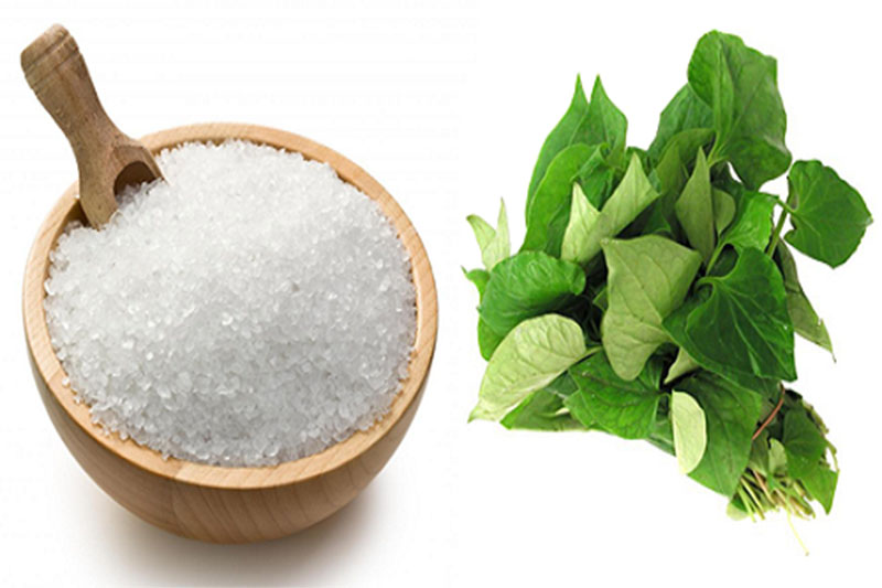 Muối hạt và rau diếp cá có thể cải thiện bệnh viêm amidan hiệu quả