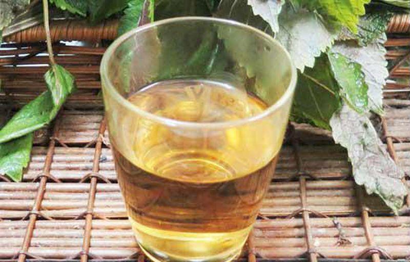 Trị mề đay hiệu quả bằng cách uống nước lá tía tô