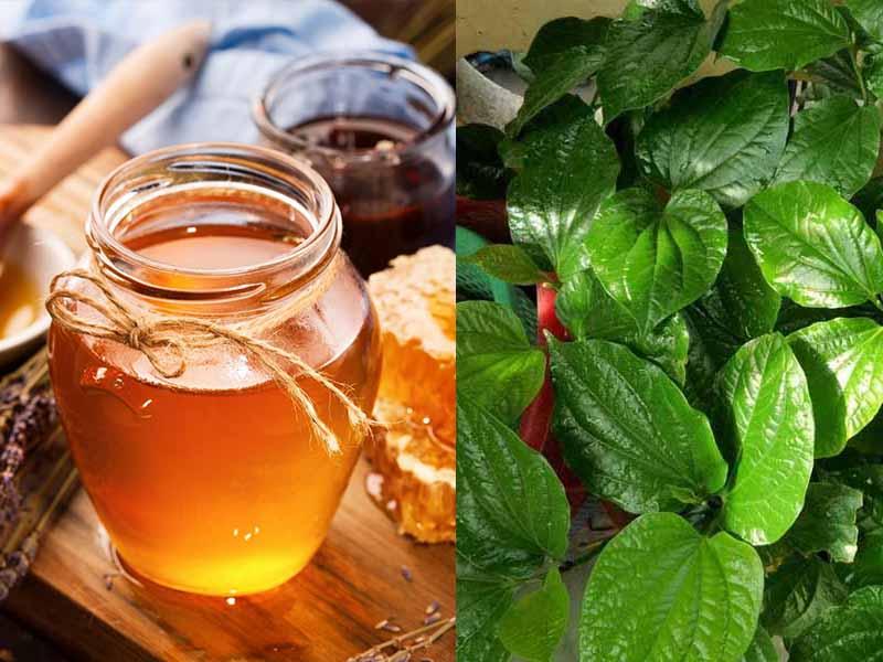 Chữa viêm họng bằng lá trầu không và mật ong