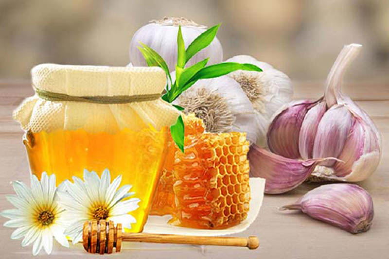 Có nhiều cách sử dụng kết hợp mật ong và tỏi trong điều trị viêm phế quản mãn tính