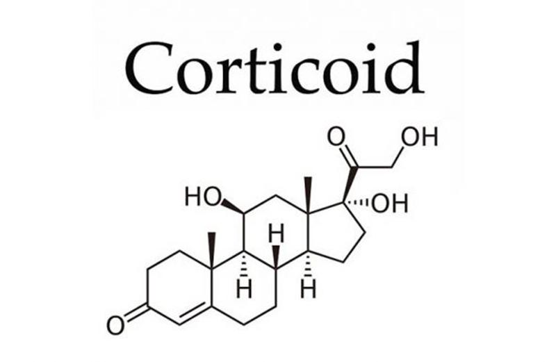 Cấu trúc hóa học của các corticoid chống viêm