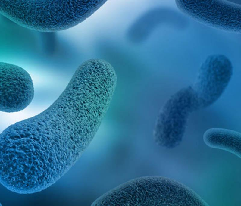 Nguyên nhân gây viêm xoang bội nhiễm