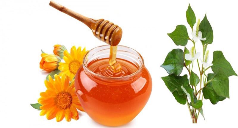 Không sử dụng bài thuốc từ rau diếp cá và mật ong cho trẻ nhỏ dưới 1 tuổi