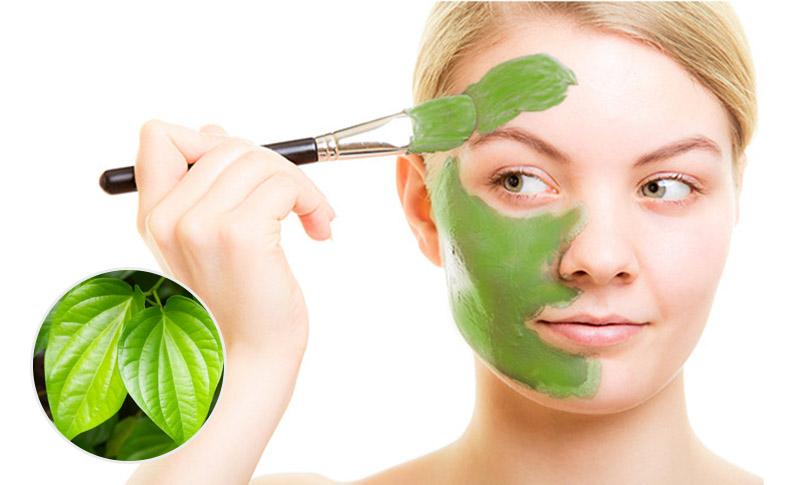 Bôi nước cốt lá trầu không lên vùng da bị viêm, ngứa mỗi ngày có thể cải thiện bệnh hiệu quả