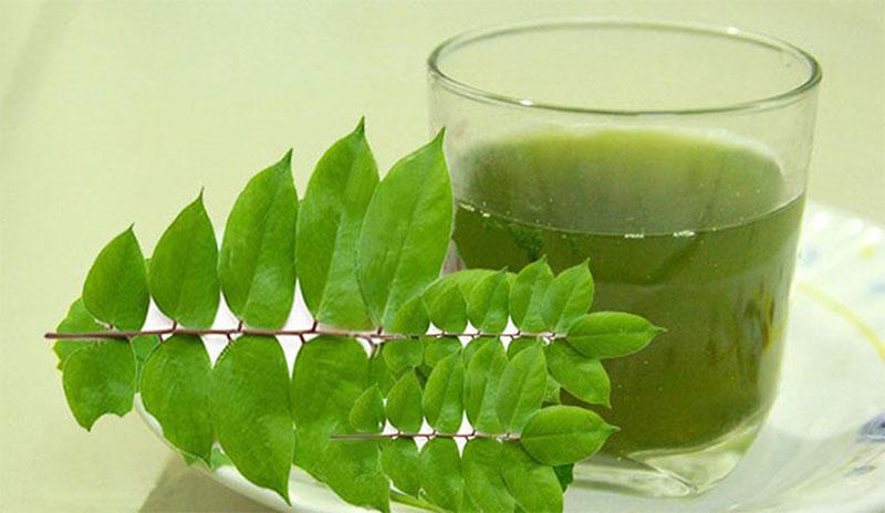Uống nước lá khế là phương pháp đơn giản để cải thiện bệnh viêm da cơ địa mỗi ngày