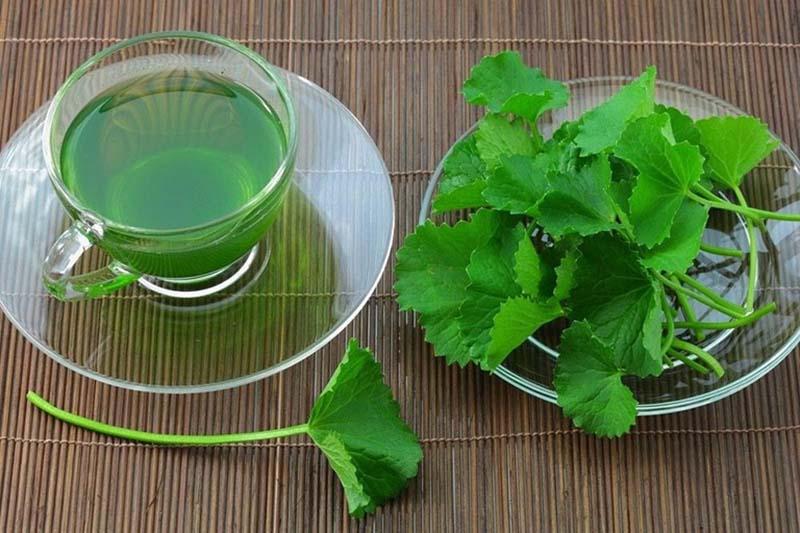 Uống nước rau má giúp thanh nhiệt, giải độc, cải thiện tình trạng dị ứng, mẩn ngứa sau khi tắm