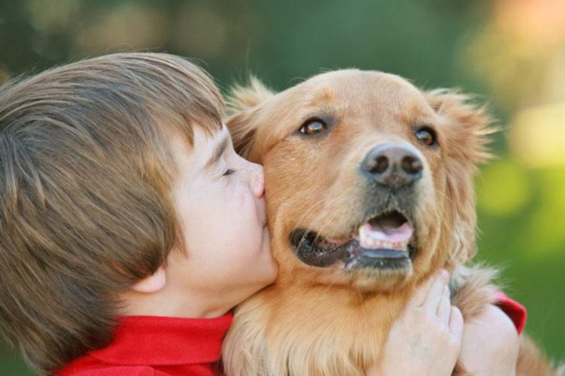 Tiếp xúc thường xuyên với động vật nuôi sẽ làm tăng nguy cơ bị mề đay, mẩn ngứa