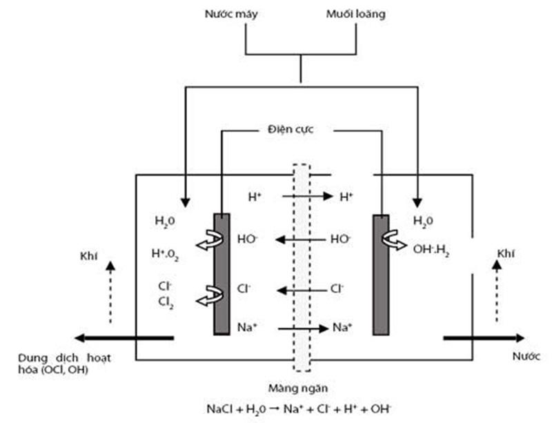 Quy trình điện phân tạo thành dung dịch Anolyte