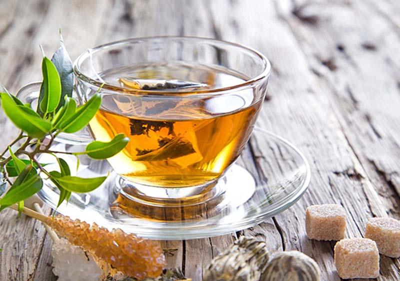 Dùng trà lá bạch đàn chữa viêm xoang