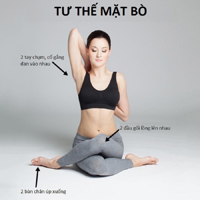 Bài tập yoga chữa đau khớp vai tư thế mặt bò