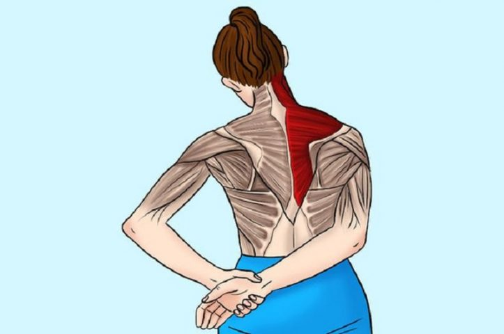 Bài tập căng duỗi cơ hình thang chữa đau vai
