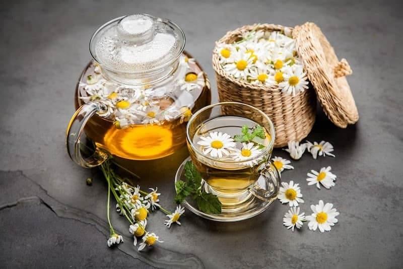 Trà cúc La Mã có công dụng chữa đau dạ dày