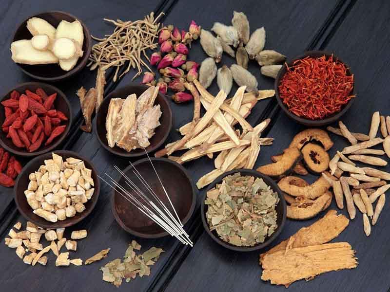 Bài thuốc Đông y chữa thoát vị đĩa đệm giúp giảm đau vùng cột sống hiệu quả