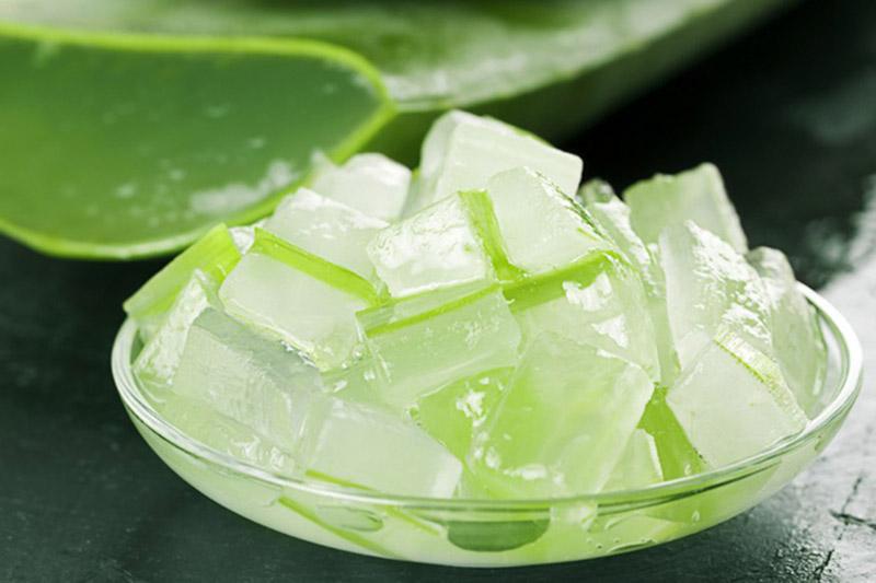 Nha đam là nguyên liệu sử dụng phổ biến trong điều trị các bệnh viêm da