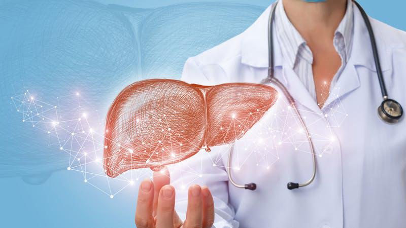 Các bệnh lý về gan, thận có thể là nguyên nhân dẫn tới tình trạng tổn thương da, mụn nước