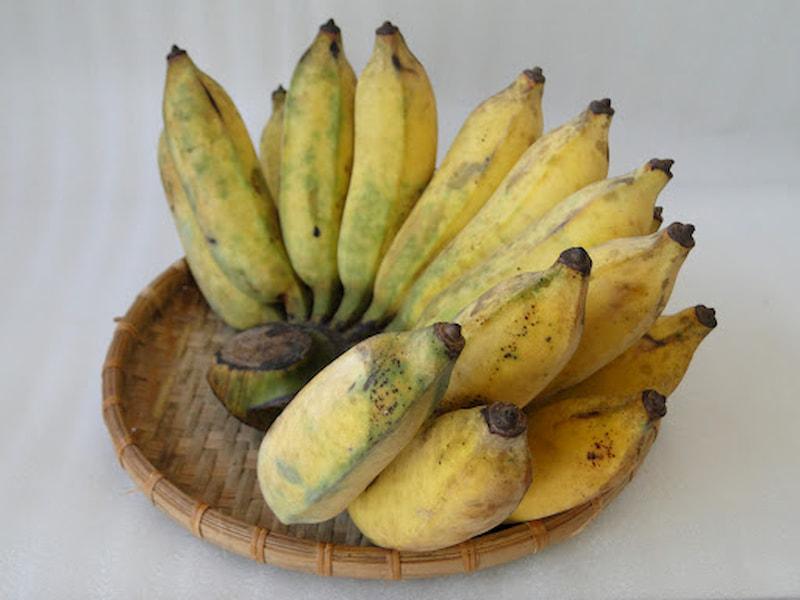 Chuối sứ chín - Đau dạ dày nên ăn hoa quả gì?