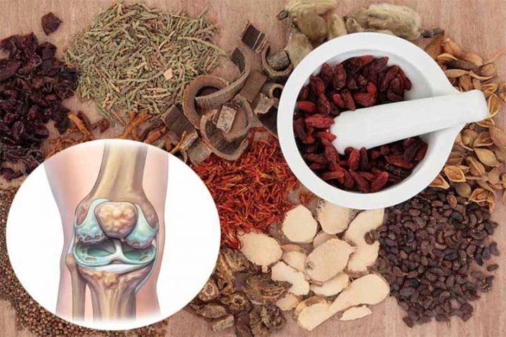 Điều trị đau khớp gối bằng Đông y dựa trên nguyên tắc chuyên sâu, toàn diện