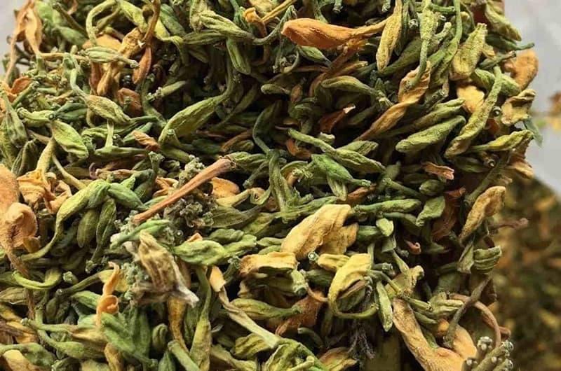 Dược liệu hoa đu đủ đực tại Vietfarm đạt tiêu chuẩn GACP-WHO