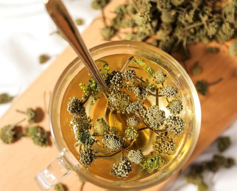 Hãm trà hoa để uống là cách dùng phổ biến