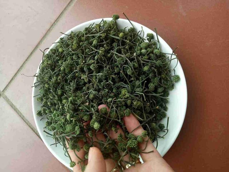 Dược liệu hoa tam thất tại Vietfarm đảm bảo chất lượng