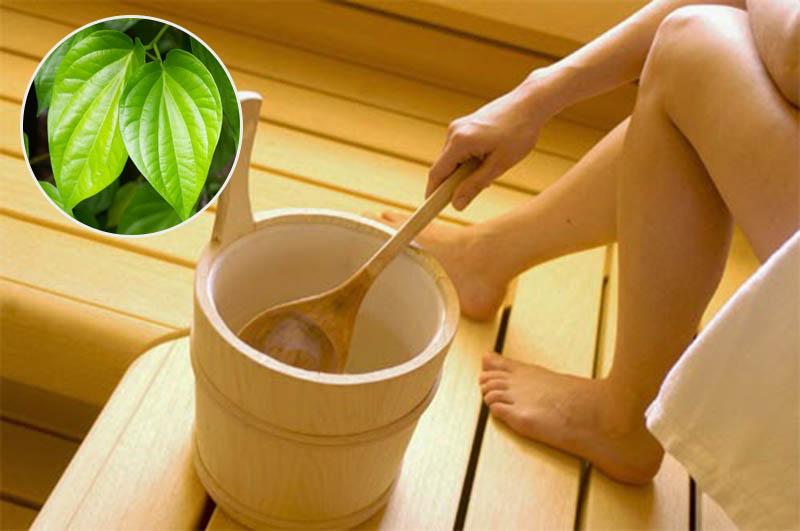 Ngâm rửa bằng lá trầu không là mẹo dân gian chữa viêm nhiễm, cải thiện ngứa rát được nhiều người biết đến