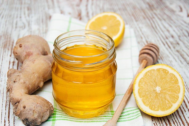 Một số loại trà thảo dược có thể giúp cải thiện triệu chứng viêm họng khá hiệu quả