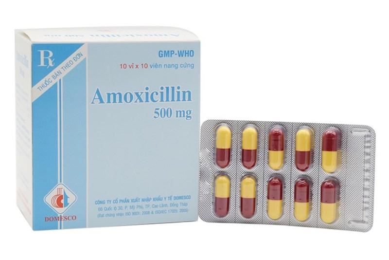 Thuốc kháng sinh Amoxicillin