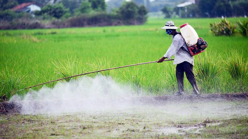 Tránh xa các dung môi, hóa chất độc hại gây vô sinh ở nam giới