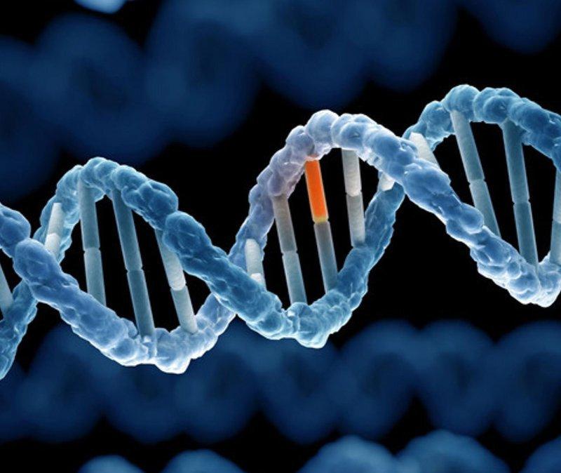 Yếu tố di truyền có ảnh hưởng đến bệnh viêm khớp phản ứng