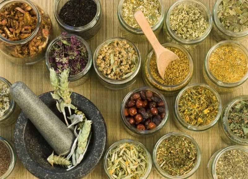Bài thuốc Đông y sử dụng thảo dược thuần tự nhiên
