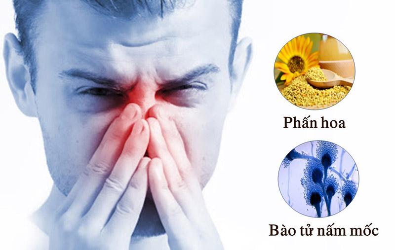 Nguyên nhân gây viêm mũi dị ứng theo mùa