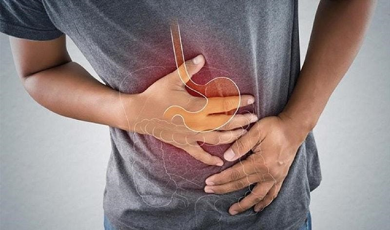Cây bạch truật có tác dụng tuyệt vời với hệ tiêu hoá