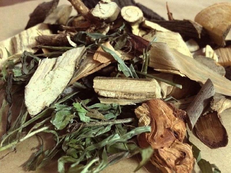 Mọi bộ phận của cây thuốc đều được sử dụng để làm thuốc